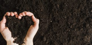 termőföld bérbeadás szja adózása